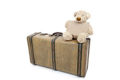 Teddy bear on an old vintage suitcase Stock Photo