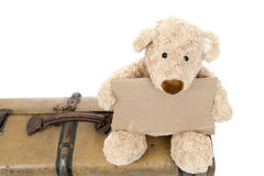 Teddy bear on an old vintage suitcase Stock Photos
