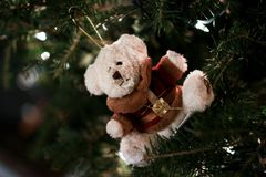 Teddy Bear Ornament. Ornament in a christmas tree royalty free stock photo