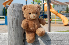 Teddy Bear at the Park stock photos