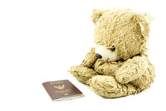 Teddy bear and passport isolated. Royalty Free Stock Image