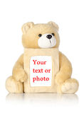 Teddy bear with photo frame Stock Photos