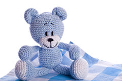 Teddy bear on picnic blanket Stock Images