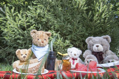 Teddy Bear Picnic Day Royaltyfria Bilder