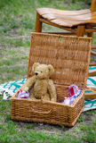 Teddy bear picnic Royalty Free Stock Image