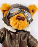 Teddy Bear Pilot. This is a shot of a Teddy Bear dressed up as a pilot Royalty Free Stock Photo
