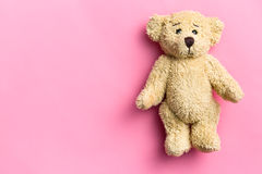 Teddy bear on pink background Stock Image