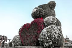 Teddy Bear with a Pink Heart, Miracle Garden, Dubai royalty free stock images