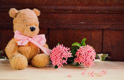 Teddy bear with pink ribbon with soft effect at pool stock photo