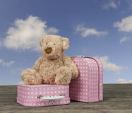 Teddy bear and pink with white dots vintage suitcases Stock Photography