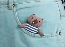 Teddy bear in a pocket. Teddy bear in a blue jeans pocket Stock Image