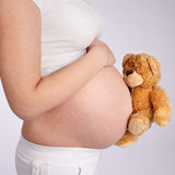 Teddy Bear and Pregnant Belly Royalty Free Stock Images