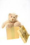 Teddy Bear Present. Teddy bear gift over white royalty free stock images