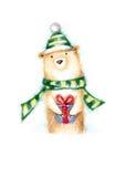 Teddy bear with present Royalty Free Stock Photos