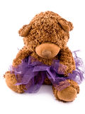 Teddy bear in purple tutu skirt Stock Images