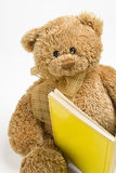 Teddy bear reading. Small teddy bear reading a book Royalty Free Stock Images