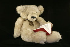 Teddy bear reading. His book Royalty Free Stock Images