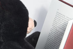 Teddy Bear reading  Royalty Free Stock Photography