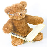 Teddy bear reading a book. A wise old teddy bear looking at a book with the aid of his reading glasses Stock Image
