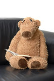 Teddy bear reading a book Royalty Free Stock Image