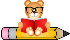 Teddy bear reading book sitting on pencil Royalty Free Stock Photography