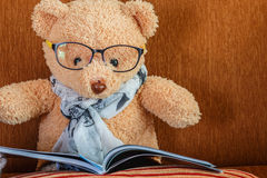 Teddy bear is reading Stock Image