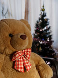 Teddy bear with a red bow with a Christmas tree. Royalty Free Stock Photo