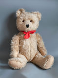 Teddy Royalty Free Stock Image