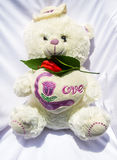 Teddy Bear with the Red Flower Stock Images