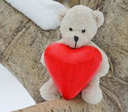 Teddy bear and red heart Royalty Free Stock Image