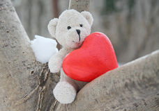 Teddy bear and red heart Stock Image