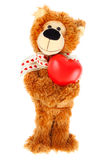 Teddy bear with red heart Stock Photography
