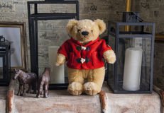 Teddy bear in a red jacket standing Stock Images