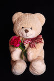 Teddy bear with red rose flower Stock Photography