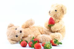 Teddy Bear and red strawberry behind the white background. Stock Images