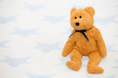 Teddy Bear with Ribbon Royalty Free Stock Images