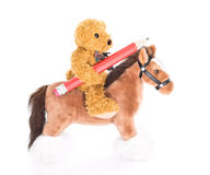 Teddy bear ride a horse and hold pencil. On white background Stock Photos