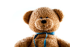 Teddy Bear On The Rise Royalty Free Stock Images