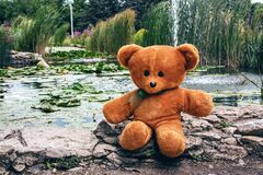 Teddy bear on rock by pond