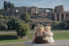 Teddy bear in Rome. Teddy bear loving in Rome Royalty Free Stock Photo
