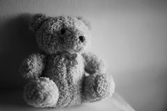 Teddy bear  in room. Black and white Royalty Free Stock Images