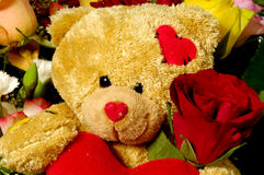Teddy bear and rose Stock Photo