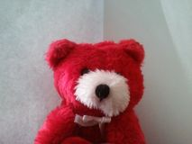 Teddy Bear rouge et blanc photographie stock