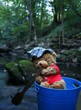 Teddy bear rowing Royalty Free Stock Photos