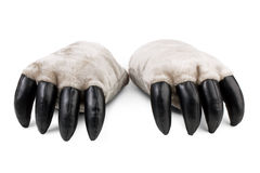 Teddy bear's paws with claws Royalty Free Stock Photography