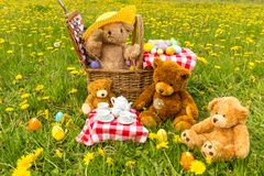 Teddy Bear`s Picnic in summer with bright yellow dandelions stock photography
