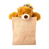 teddy bear in sack bag Royalty Free Stock Image