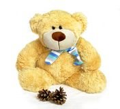 Teddy Bear with scarf. Cute teddy bear with scarf on white background stock photo