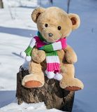 Teddy bear in a scarf sits on a stump. In the middle of white snow on a winter day stock image