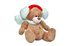 Teddy bear with scarf Stock Photos